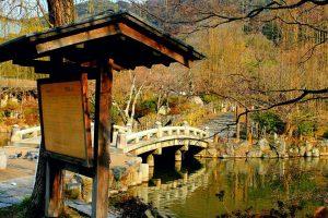 Kyoto Japan 2015